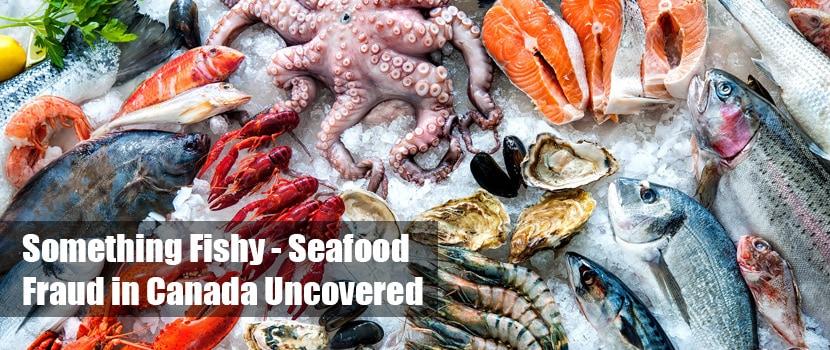 seafood fraud canada