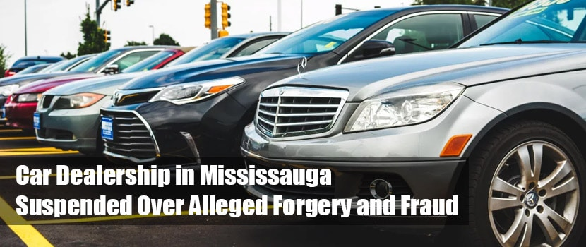 mississauga fraud investigations