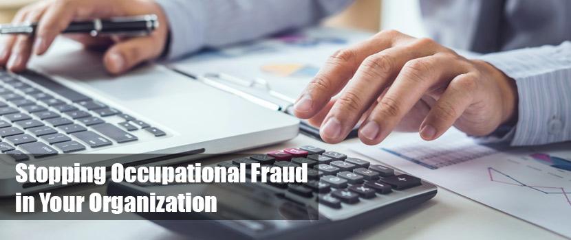 occupational fraud investigators